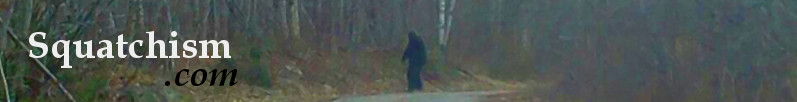 Bigfoot Videos. Is that Sasquatch on film?