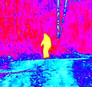 Sasquatch pictures from Maine's Kathdin region.